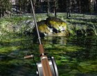 Juego Lake Fishing 3